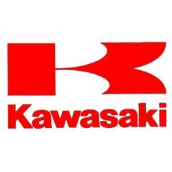 KAWASAKI PUIG PRO