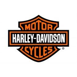 HARLEY DAVIDSON RETROVISORES