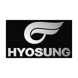 HYOSUNG RETROVISORES