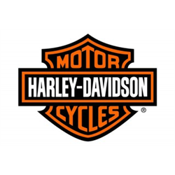 HARLEY DAVIDSON NEW GENERATION