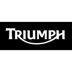 TRIUMPH PASTILLAS SBS